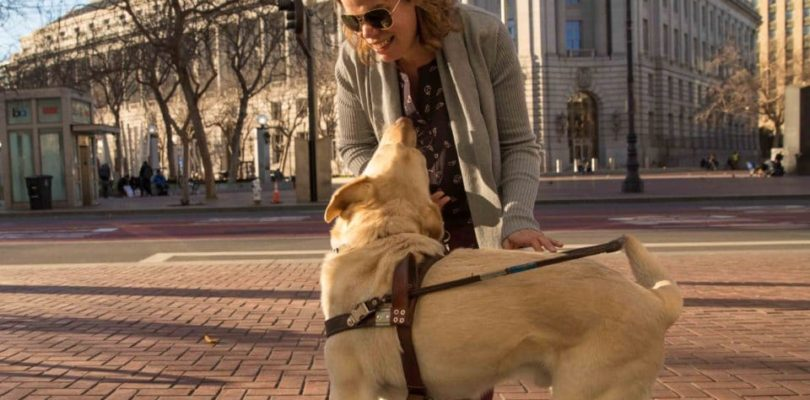 Microsoft Creates an Application to Help Blind Canadians Move Around